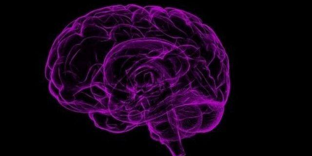 reprogrammer son cerveau et transformer sa vie